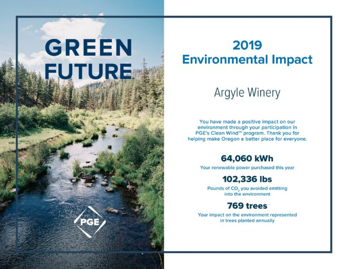 2019 Clean Wind Impact